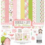 Echo Park - Bundle of Joy New Addition Collection - Girl - 12 x 12 Collection Kit