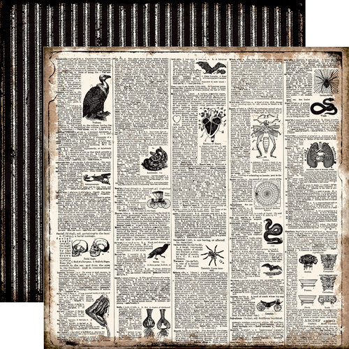 Echo Park - Chillingsworth Manor Collection - Halloween - 12 x 12 Double Sided Paper - Dictionary