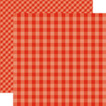 Echo Park - Dots and Stripes Gingham Collection - Summer - 12 x 12 Double Sided Paper - Lifeguard Gingham