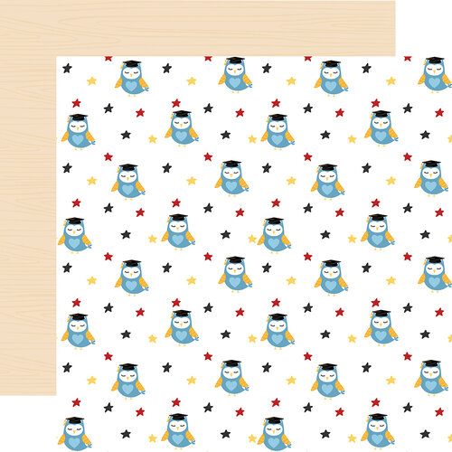 Echo Park - School Rules Collection - 12 x 12 Double Sided Paper - Owls
