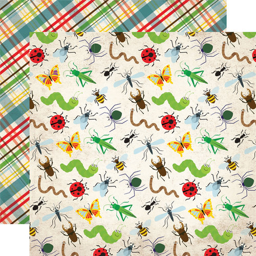 Echo Park - Bug Collection - 12 x 12 Double Sided Paper - Bugs