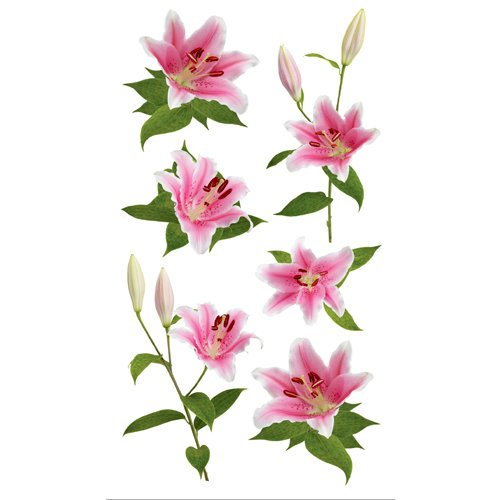 EK Success - Sticko Photo Flowers Collection - Stickers - Pink Lily