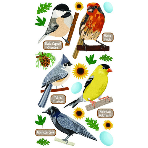 EK Success - Sticko Classic 58 Stickers - Top US Birds 1