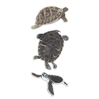 EK Success - Jolee's By You  Slims - Dimensional Stickers - Turtle