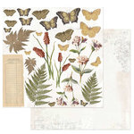 49 and Market - Vintage Artistry Collection - 12 x 12 Double Sided Paper - Flora and Fauna