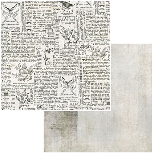49 and Market - Vintage Artistry Essentials Collection - 12 x 12 Double Sided Paper - Connotation