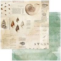 49 and Market - Vintage Artistry Shore Collection - 12 x 12 Double Sided Paper - Triton's Shell