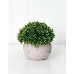 Foundations Decor - Tray Decor - Stone Pot and Foliage