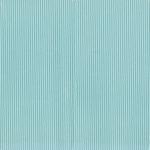 Fancy Pants Designs - Memories Captured Collection - 12 x 12 Corrugated Paper - Blue