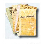 Fancy Pants Designs - Creative Cards - 4x6.5 - The Perfect Pen - Journaling Cards, CLEARANCE