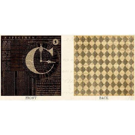 Graphic 45 - Communique Collection - 12 x 12 Double Sided Paper - A Fine Specimen