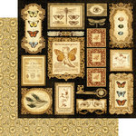 Graphic 45 - Olde Curiosity Shoppe Collection - 12 x 12 Double Sided Paper - Parlor Wall