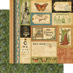 Graphic 45 - Olde Curiosity Shoppe Collection - 12 x 12 Double Sided Paper - Bazaar of Wonders