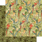 Graphic 45 - Safari Adventure Collection - 12 x 12 Double Sided Paper - Birds of a Feather