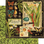 Graphic 45 - Nature Sketchbook Collection - 12 x 12 Double Sided Paper - Nature Sketchbook