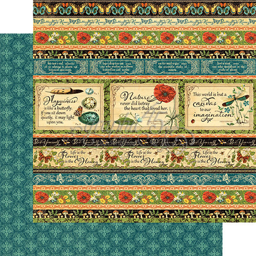 Graphic 45 - Nature Sketchbook Collection - 12 x 12 Double Sided Paper - Seasonal Splendor