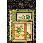 Graphic 45 - Nature Sketchbook Collection - Ephemera Cards