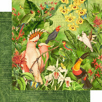Graphic 45 - Lost In Paradise Collection - 12 x 12 Double Sided Paper - Welcome to the Jungle