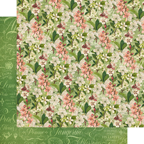 Graphic 45 - Fruit and Flora Collection - 12 x 12 Double Sided Paper - Fragrant Blossoms
