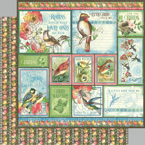 Graphic 45 - Bird Watcher Collection - 12 x 12 Double Sided Paper - Look Up!