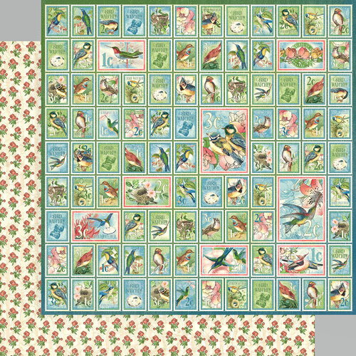 Graphic 45 - Bird Watcher Collection - 12 x 12 Double Sided Paper - Best Of Friends