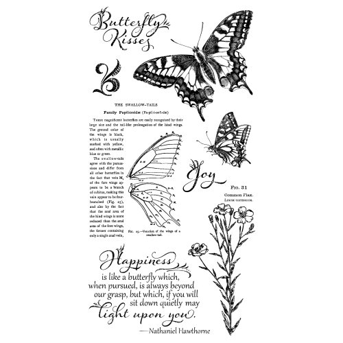 Graphic 45 - Hampton Art - Nature Sketchbook Collection - Cling Mounted Rubber Stamps - One