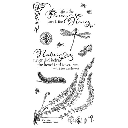 Graphic 45 - Hampton Art - Nature Sketchbook Collection - Cling Mounted Rubber Stamps - Two