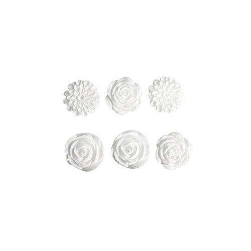 Melissa Frances - Vintage Resin Applique - Set of Six - Blossoms Assortment