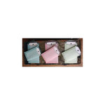 Melissa Frances - C'est la Vie Collection - Vellum Envelopes and Tags - Pink