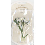 Melissa Frances - Vintage Flower - Delicate Blossom - White