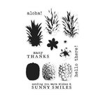Hero Arts - Clear Acrylic Stamps - Color Layering Pineapple