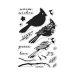 Hero Arts - Clear Acrylic Stamps - Color Layering Cardinal