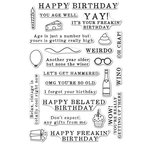 Hero Arts - Everyday Collection - Clear Acrylic Stamps - Irreverent Birthday Messages