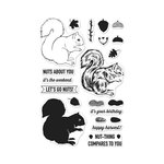 Hero Arts - Clear Acrylic Stamps - Color Layering Squirrel