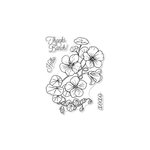 Hero Arts - Clear Acrylic Stamps - Hero Florals - Nasturtium