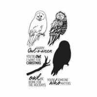 Hero Arts- Season of Wonder Collection - Halloween - Clear Photopolymer Stamps - Color Layering Owl