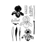 Hero Arts - Clear Photopolymer Stamps - Color Layering Iris