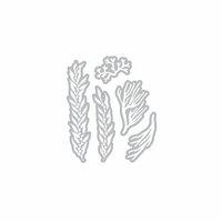 Hero Arts - Fancy Dies - Coral