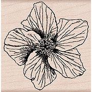 Hero Arts - Woodblock - Wood Mounted Stamps - Garden Star