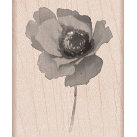 Hero Arts - Wood Block - Wood Mounted Stamp - Poppy in Wind