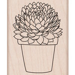 Hero Arts - Spring Collection - Woodblock - Wood Mounted Stamps - Potted Succulent