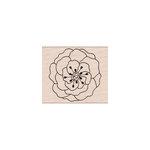 Hero Arts - Woodblock - Wood Mounted Stamps - Many Petals
