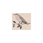 Hero Arts - Woodblock - Wood Mounted Stamps - Wise Bird