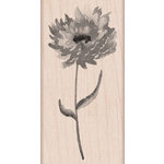 Hero Arts - Wood Block - Wood Mounted Stamp - Puff Flower