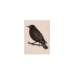 Hero Arts - Woodblock - Wood Mounted Stamps - Starling On Branch