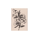 Hero Arts - Woodblock - Wood Mounted Stamps - Fleurettes