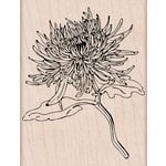 Hero Arts - Spring Collection - Woodblock - Wood Mounted Stamps - Mum Flower