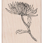 Hero Arts - Spring Collection - Woodblock - Wood Mounted Stamps - Mum Stem
