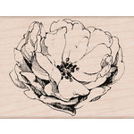 Hero Arts - Spring Collection - Woodblock - Wood Mounted Stamps - Antique Rose