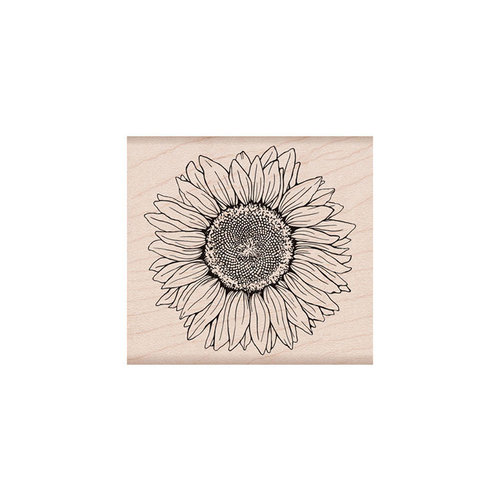 Hero Arts- Season of Wonder Collection - Woodblock - Wood Mounted Stamps - Hero Florals Sunflower
